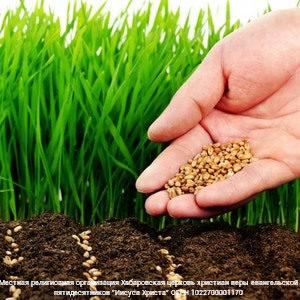 Сеяние, жатва, почва